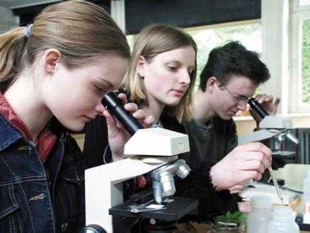 am-Mikroskop